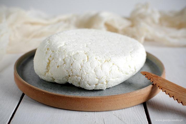 Domowy twaróg (biały ser)